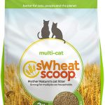 sWheat Scoop Premium+ Unscented Clumping Wheat Cat Litter By sWheat Scoop