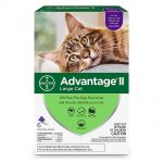 Advantage II Once-A-Month Cat & Kitten Topical Flea Treatment Over 9 lbs., Pack of 6